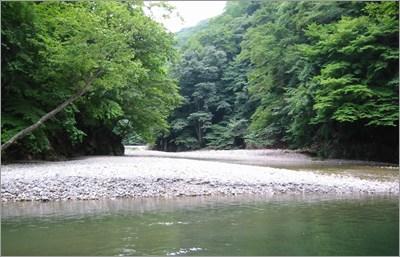 静かな川岸