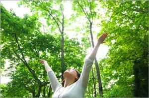 森で深呼吸
