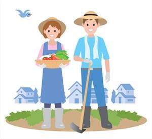 夫婦で畑作業